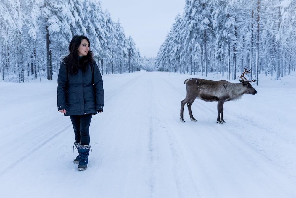woman in blue jacket standing near moose