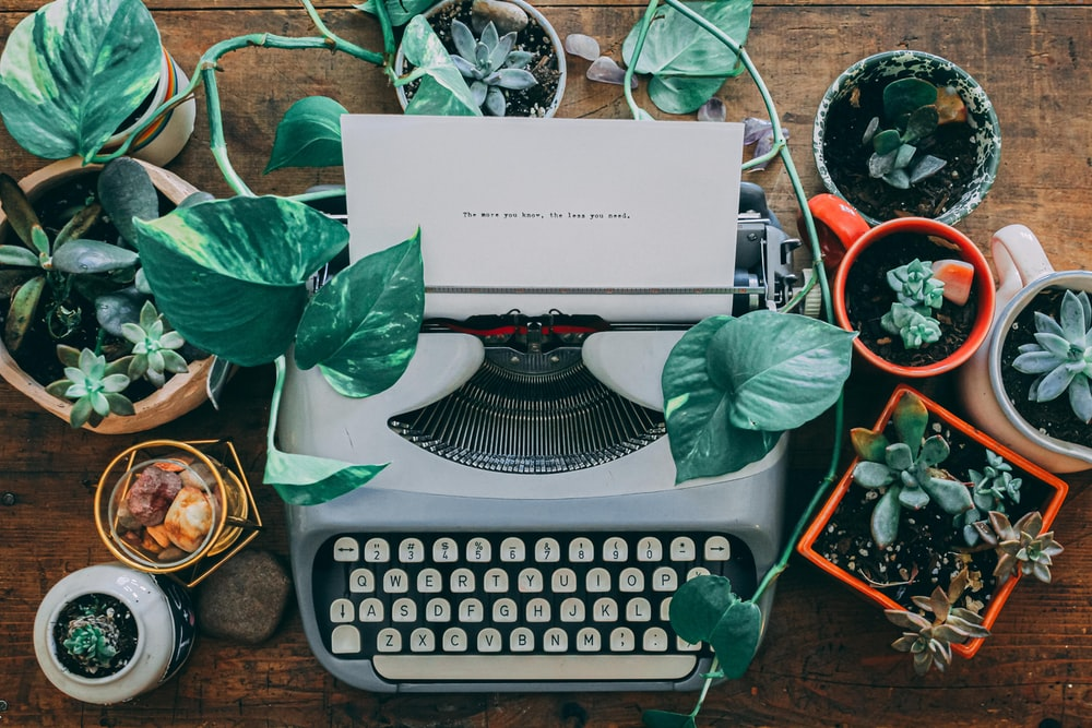 flat lay photography of a typewriter surrounded by succulents
