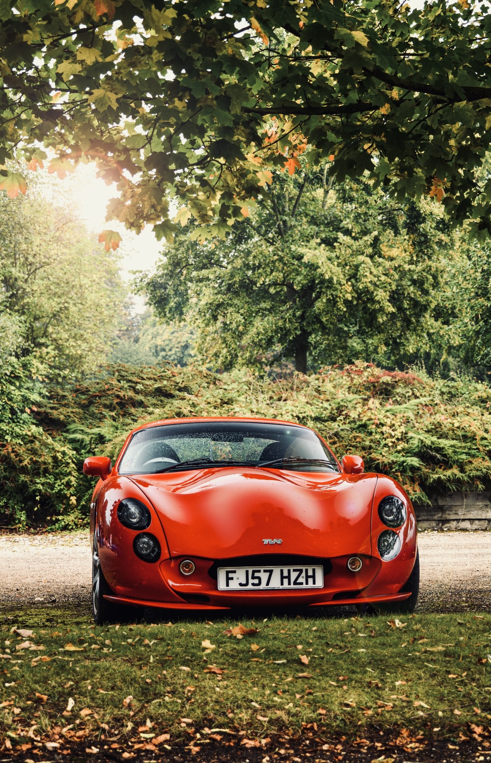 red supercar on grass