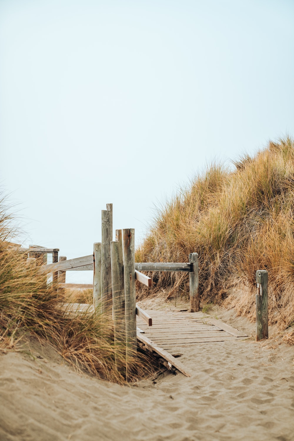 brown wooden with railing pathway on shore during day