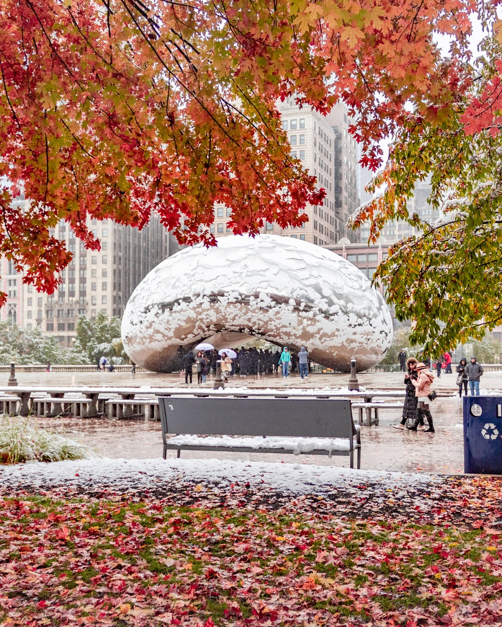 Cloudgate, Chicago during daytime