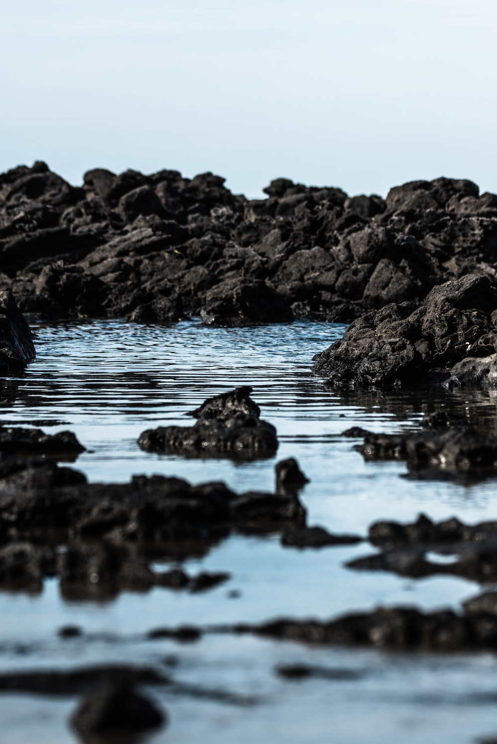 rocky shore during day