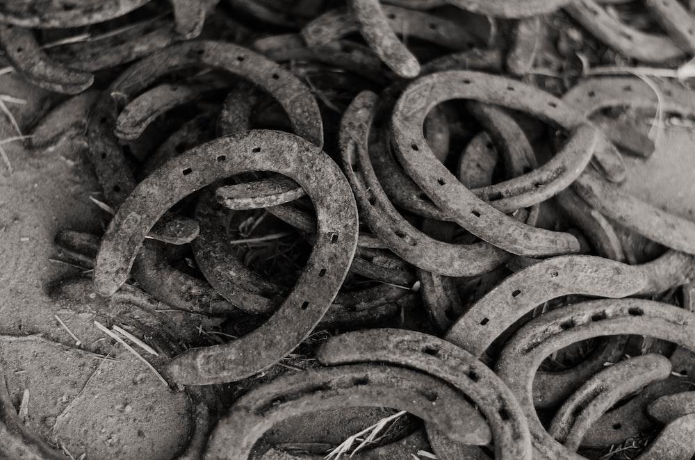 greyscale photography of horseshoes lot