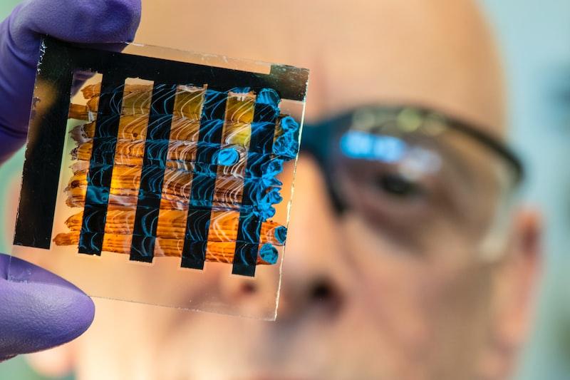 諾貝爾醫學獎得主揭細胞缺氧因應機制 有助抗癌