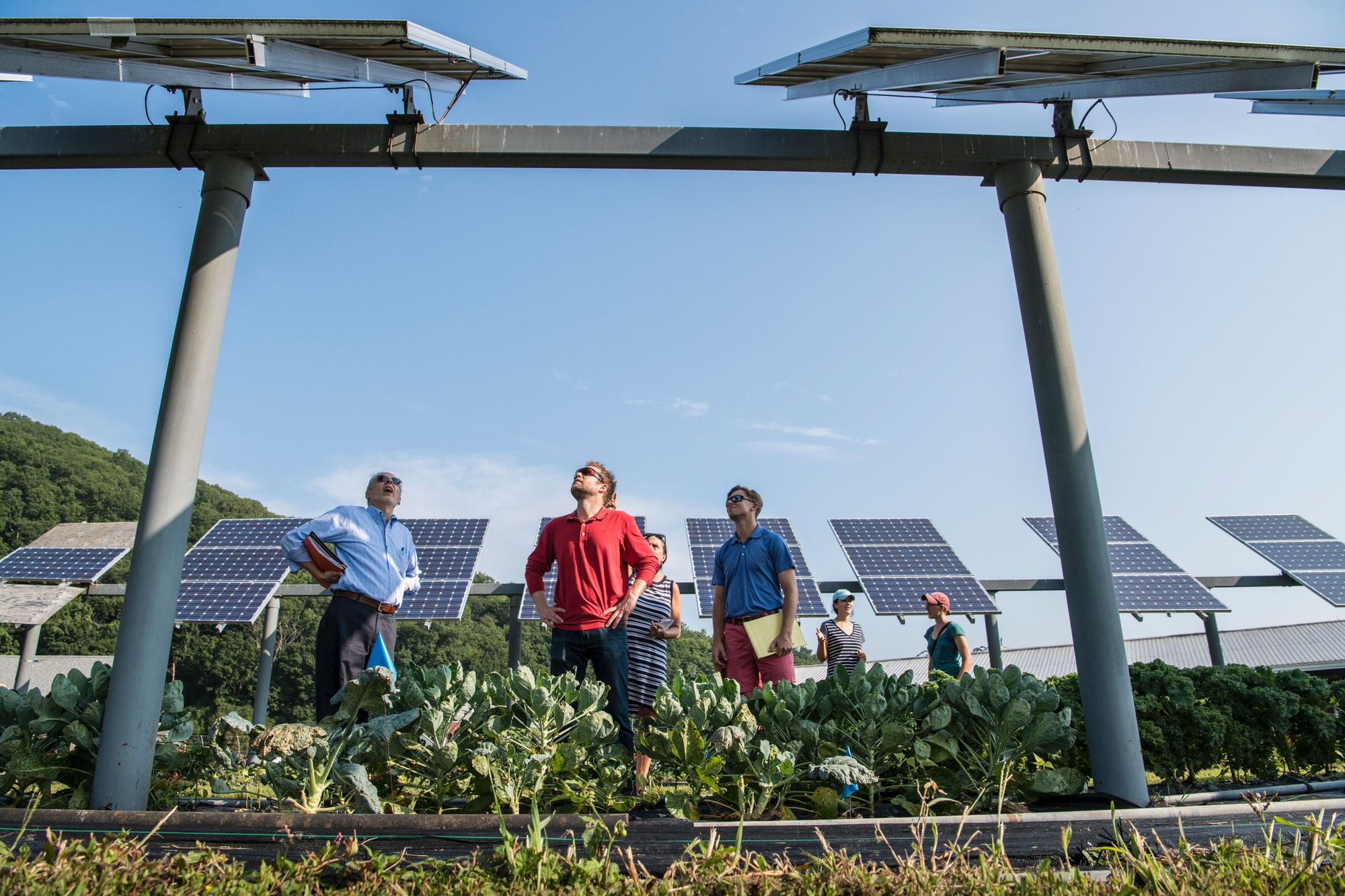 Klimaschutz in Deutschland – 6 Organisationen mit starken Lösungen