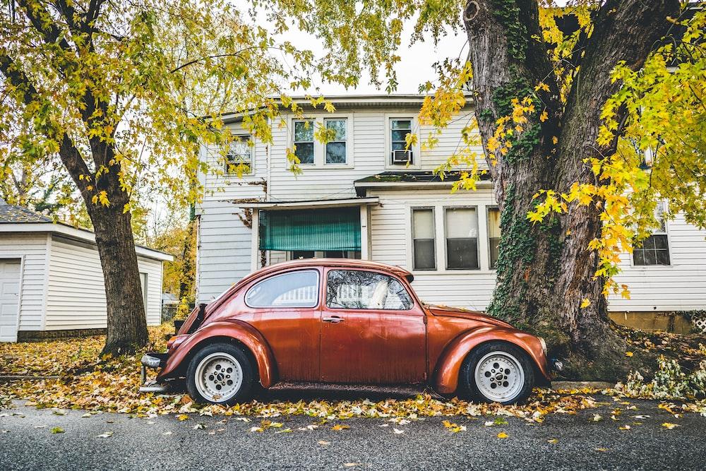 brown Volkswagen Beetle