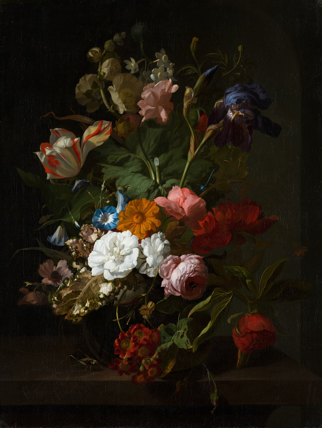 Vase with Flowers. Circa 1700.  Institution: Mauritshuis Provider: Digitale Collectie Providing Country: Netherlands PD for Public Domain Mark
