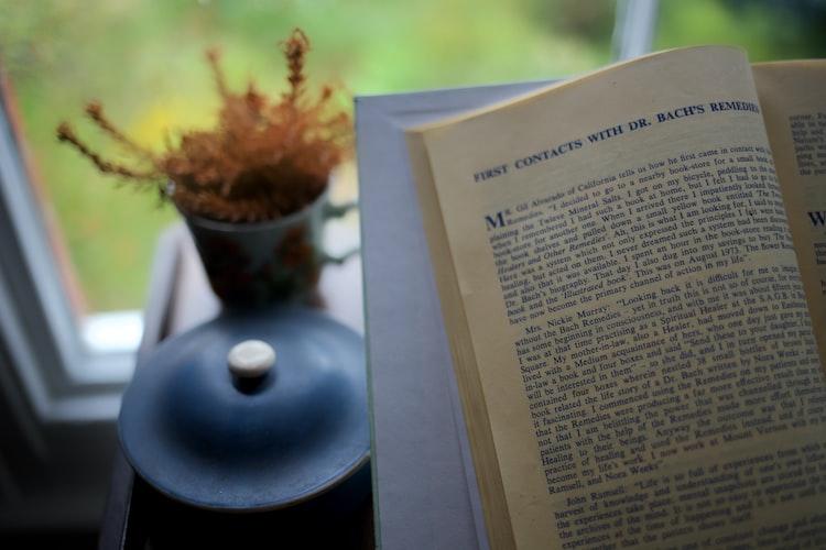 Buku Ilegal Kian Marak, Download versi PDF termasuk Bajakan?