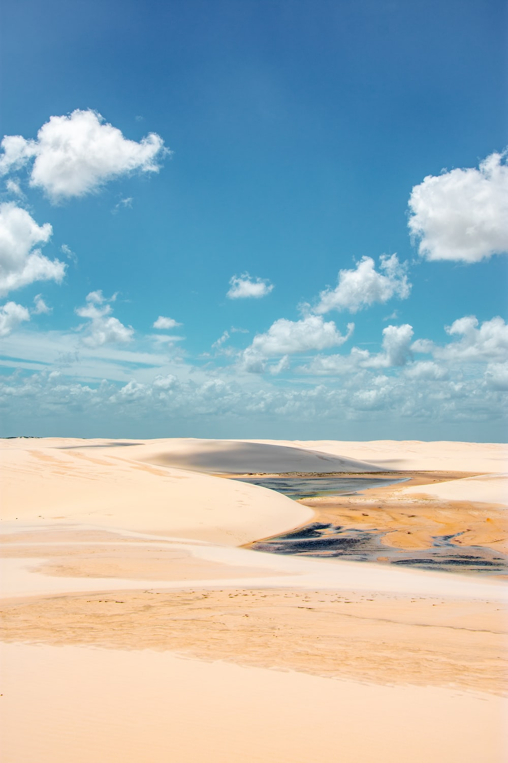 body of water on white sand