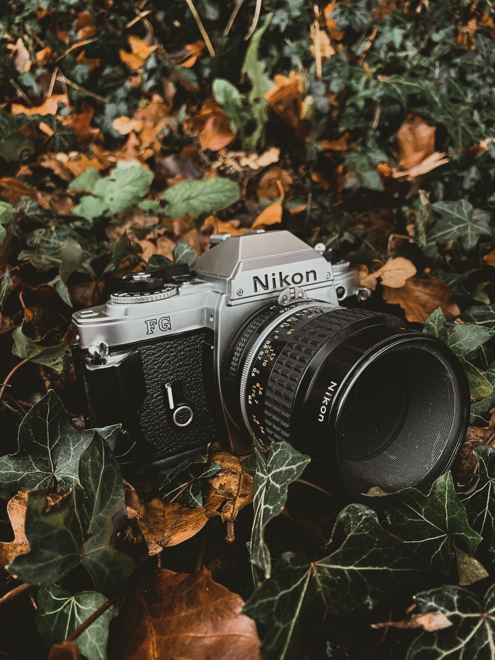 grey and black Nikon SLR camera
