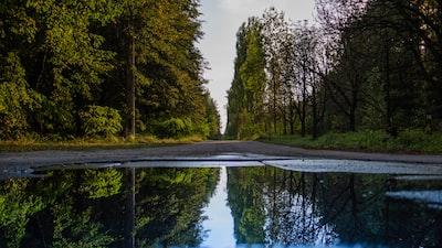body of water photograph ukraine zoom background