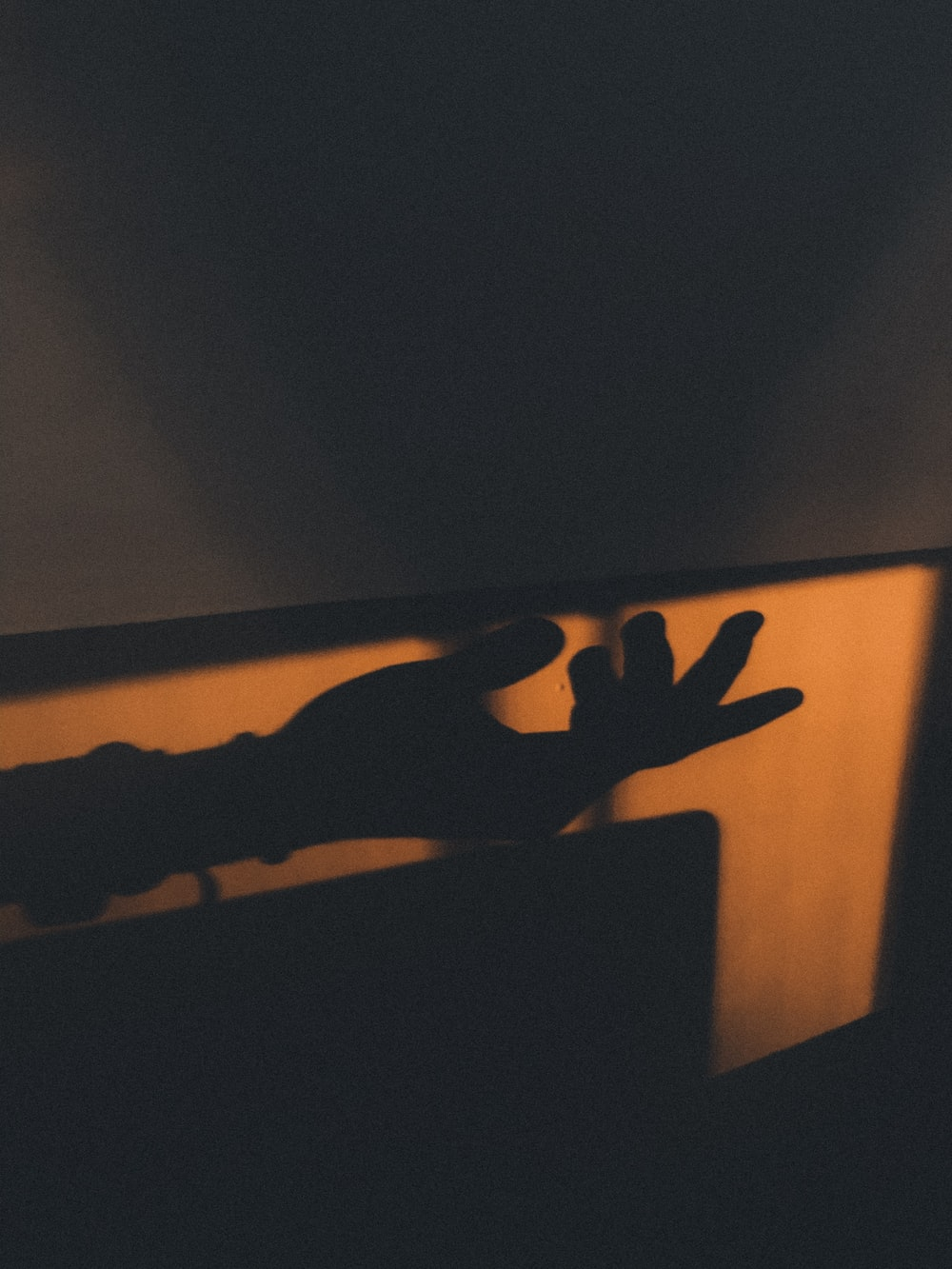 silhouette of right palm