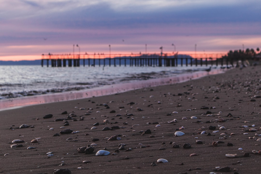 Seashore with seashells