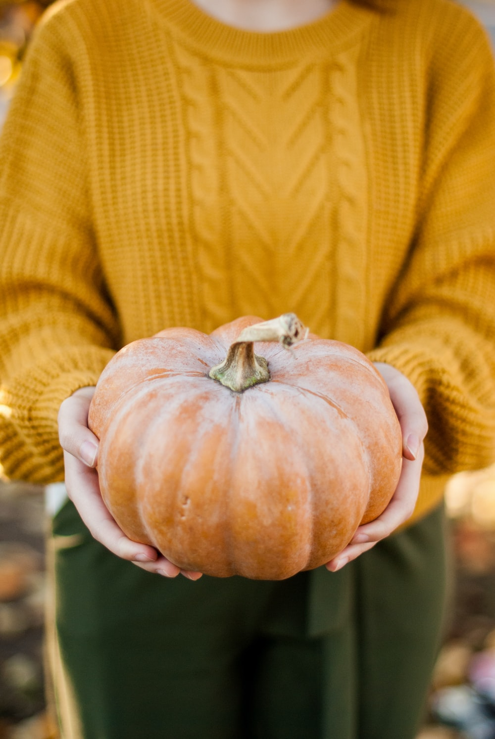 woman in brown sweater holding pumpkin