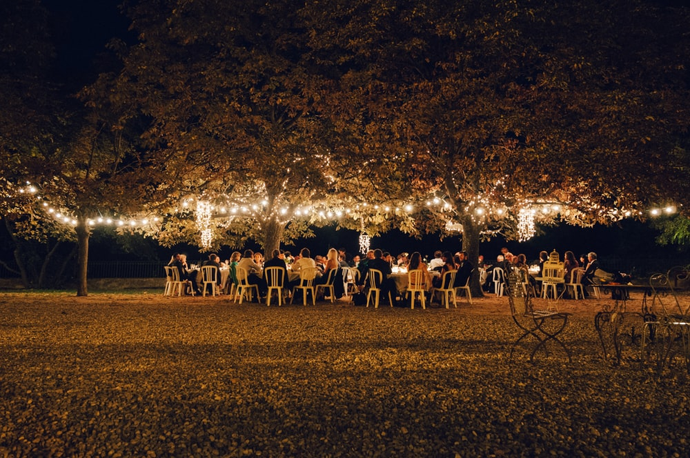 people under trees with string lights