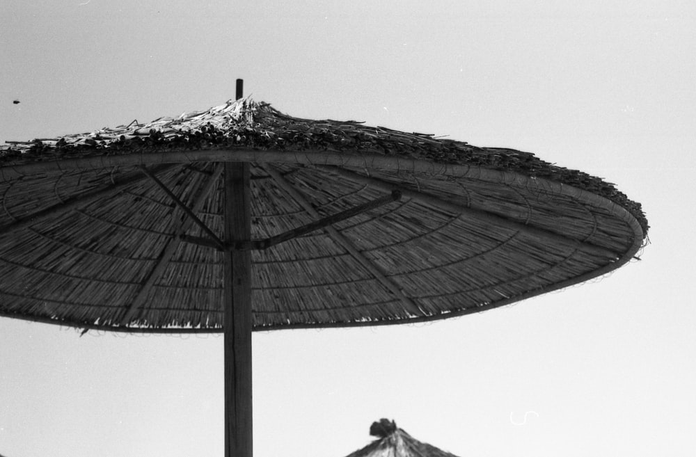 thatch parasol during day