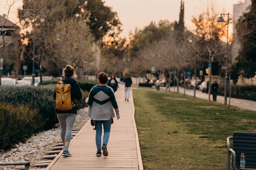people walking near trees