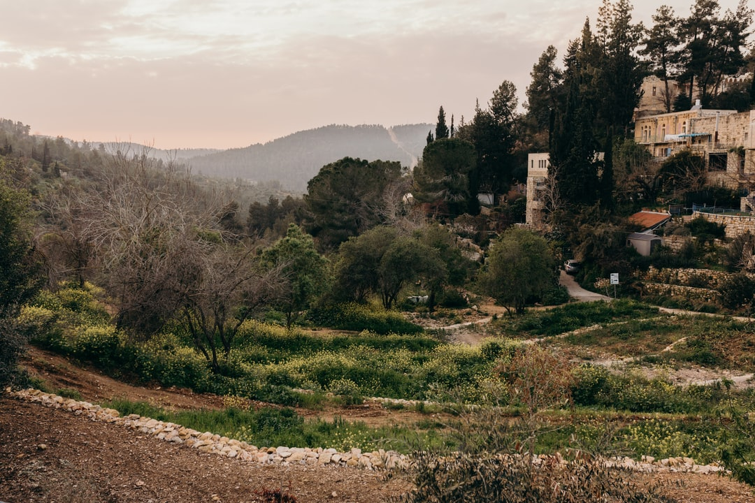 Scenic picture of the hills and nature near Ein Karem, Jerusalem, Israel.