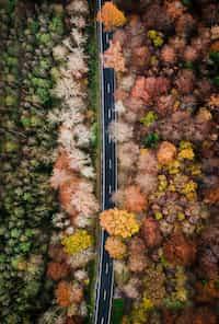 Cycling Through The Seasons  brake stories