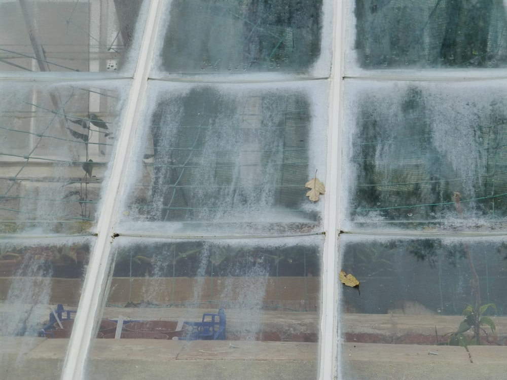 clear glass window panels