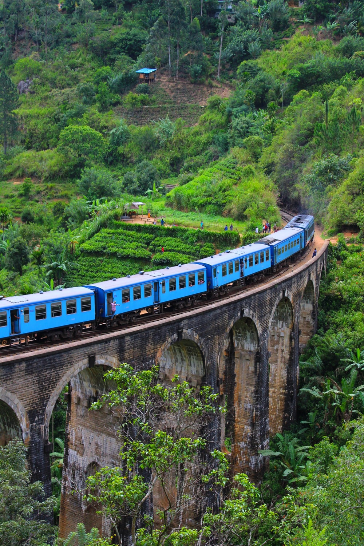 blue train on arch bridge near green field during daytime
