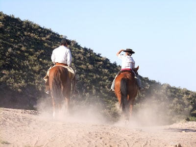two man riding horses cowboys teams background