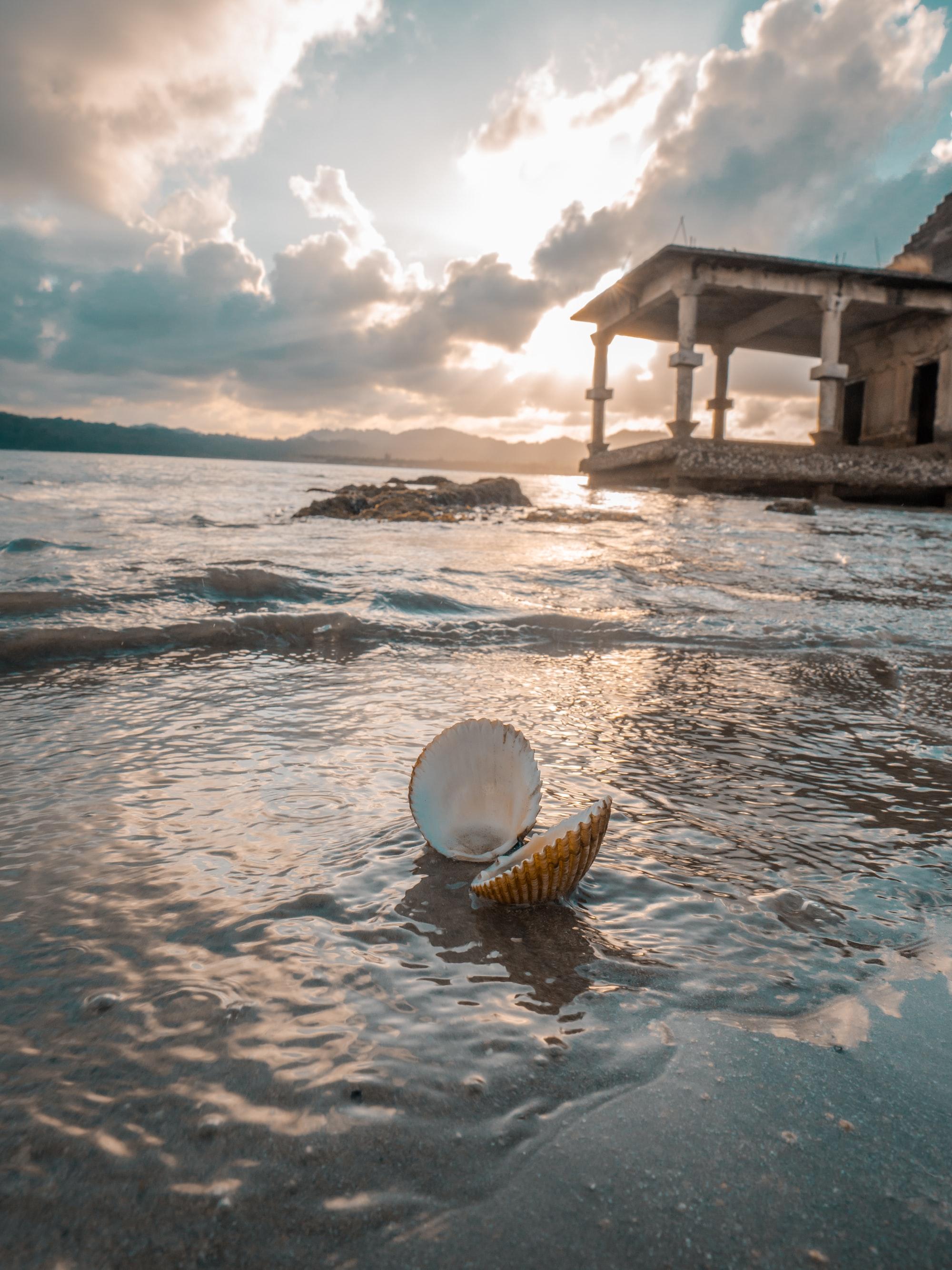 Tsunami ruins