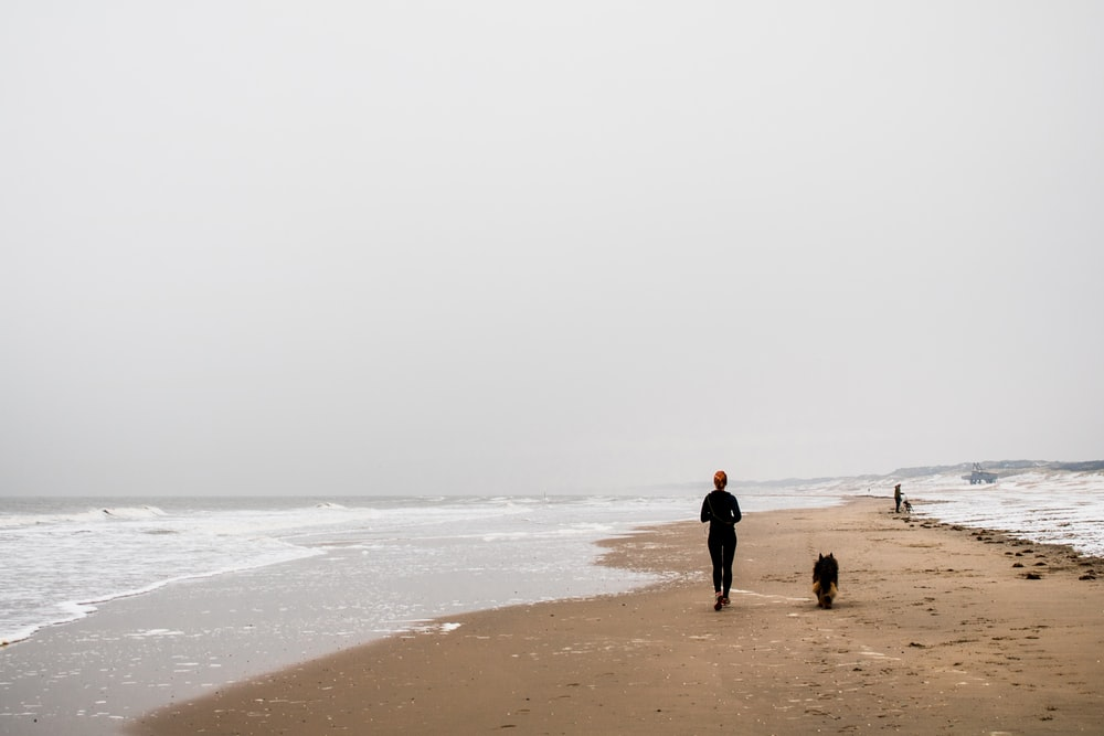 person along with dog on shore under gray skies