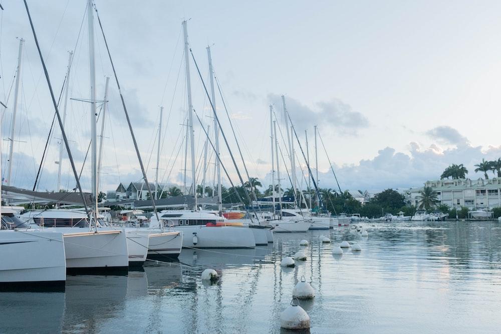 white boats beside dock