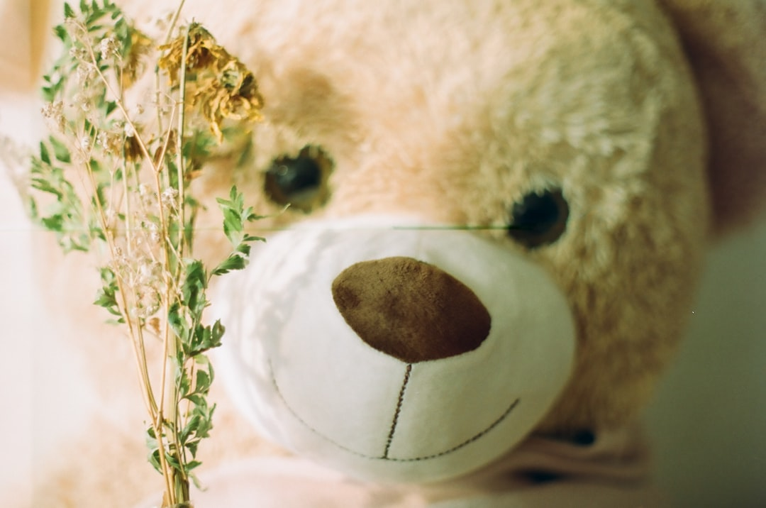 Stuffed Bear Toy with Dried Flowers taken with 35mm Film Camera