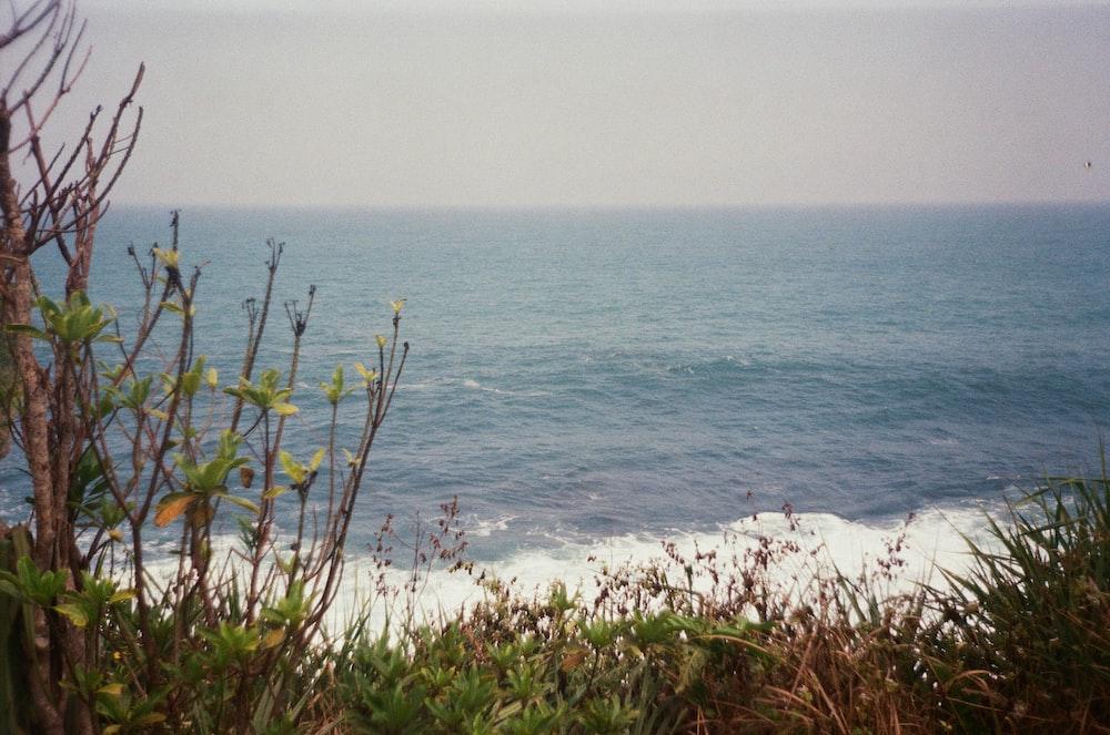 crashing waves during daytime