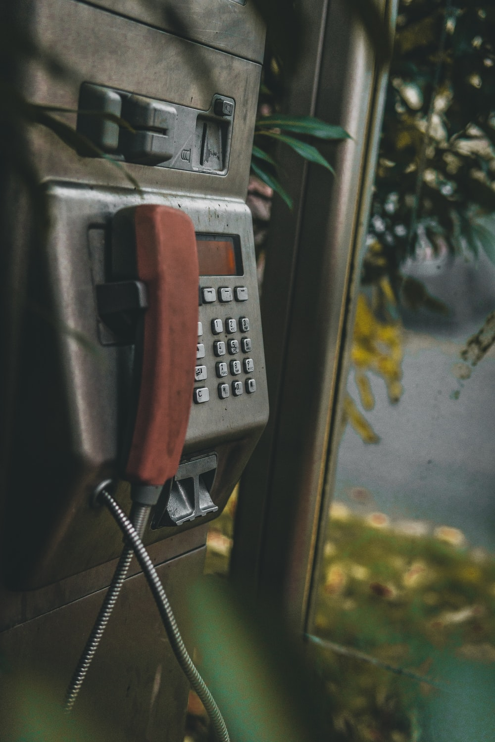 gray payphone beside tree