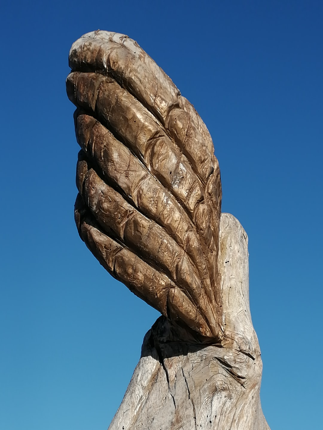 Wooden carving wings