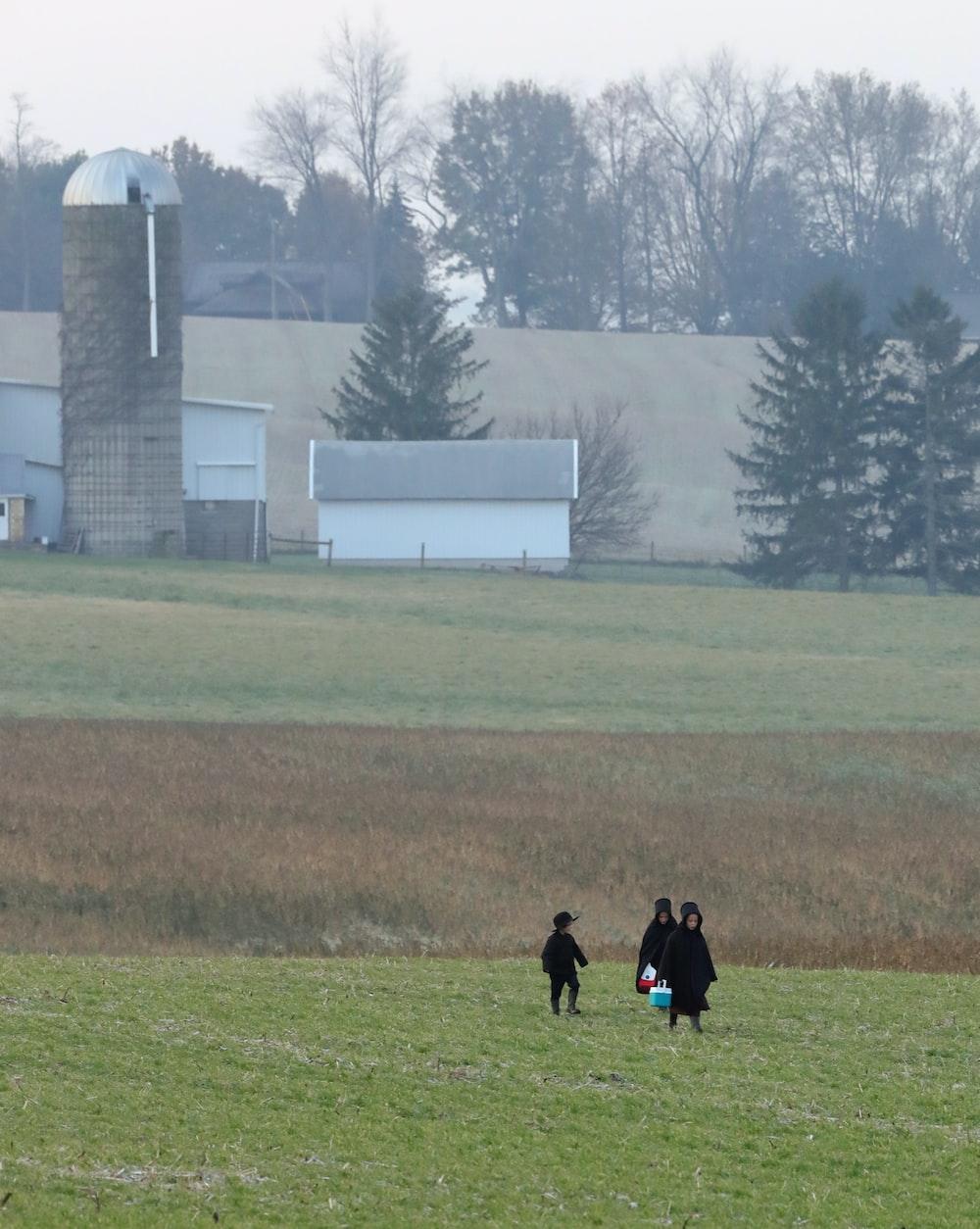 three people walking on grassy field