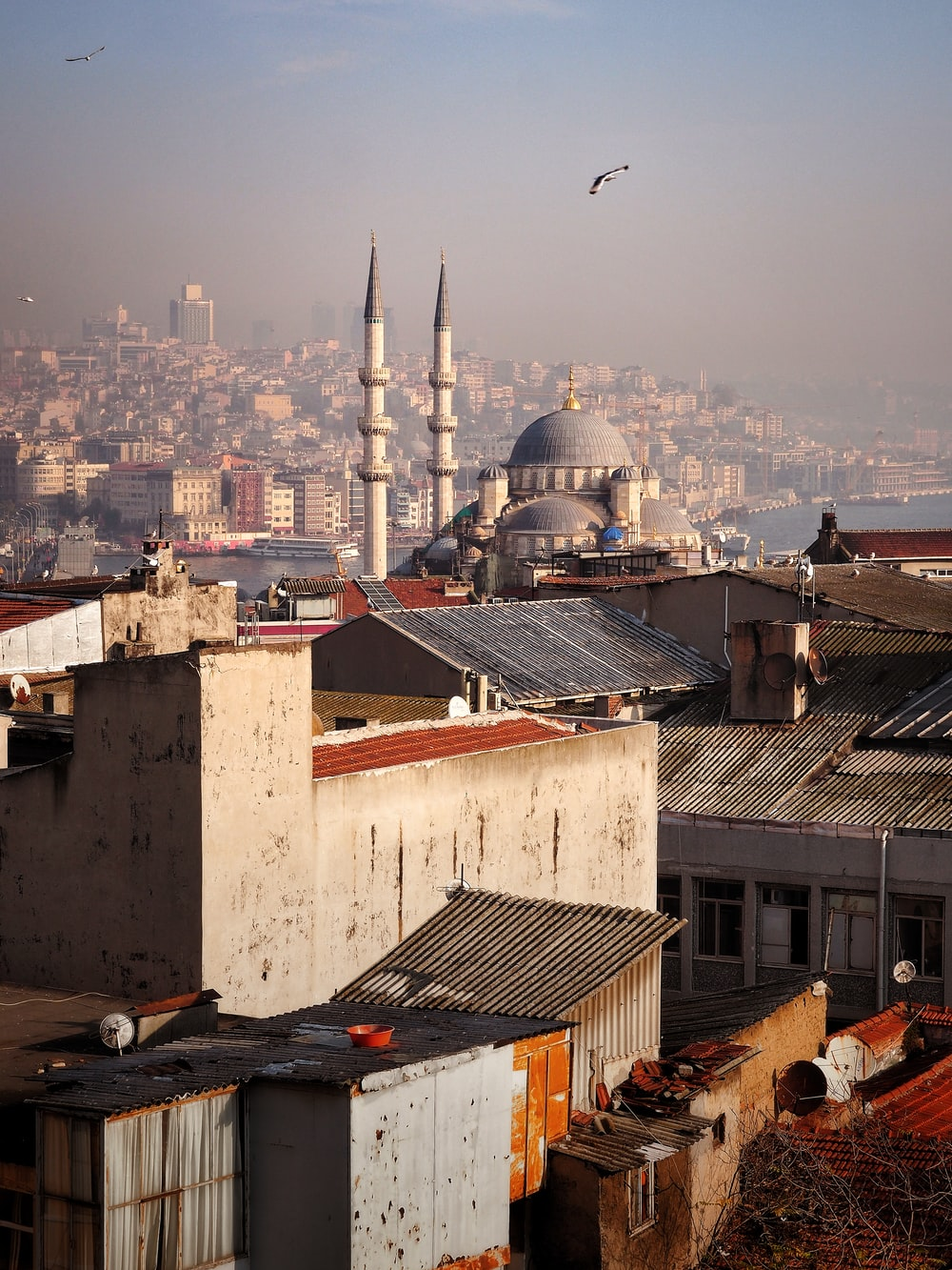 aerial photography of a mosque in the city