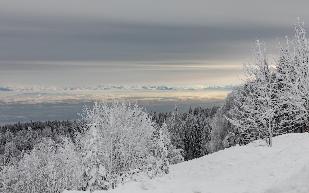 La Vue des Alpes near La Chaux-de-Fonds, before sunset.