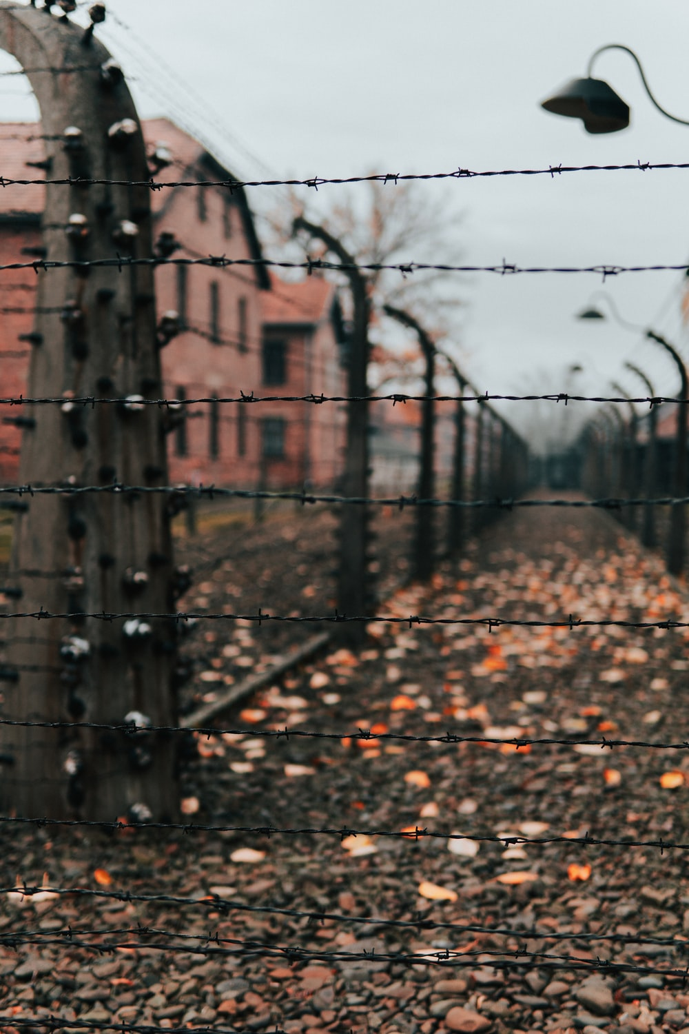 barbed wire fence in a concentration camp