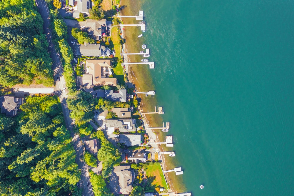 aerial view of boats and trees facing ocean