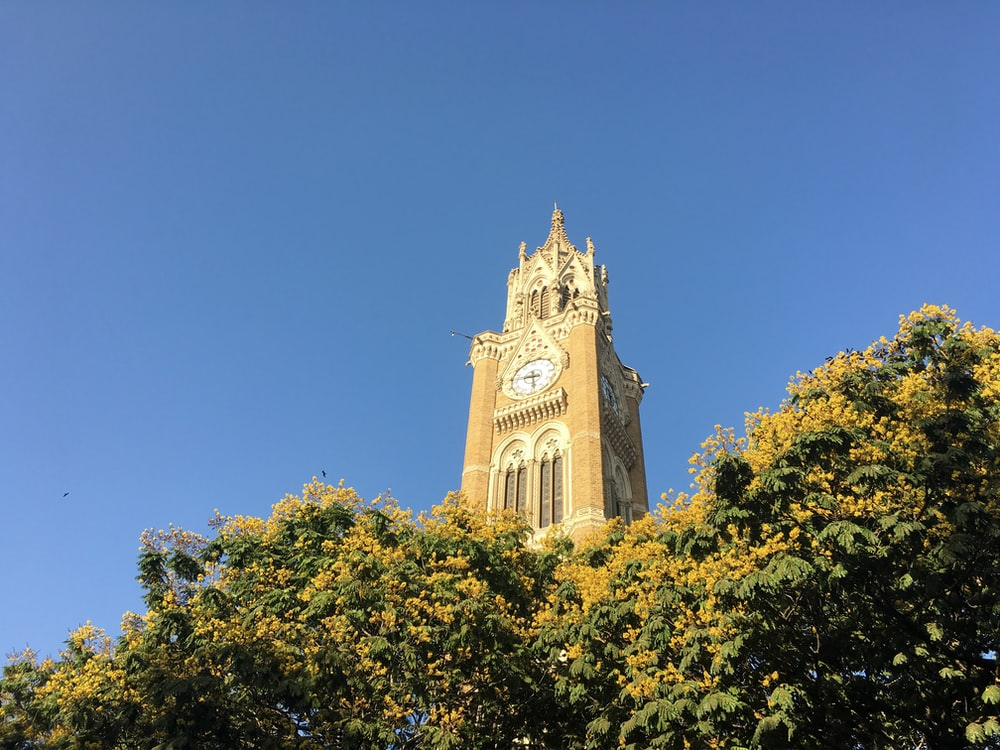 white and brown clock tower