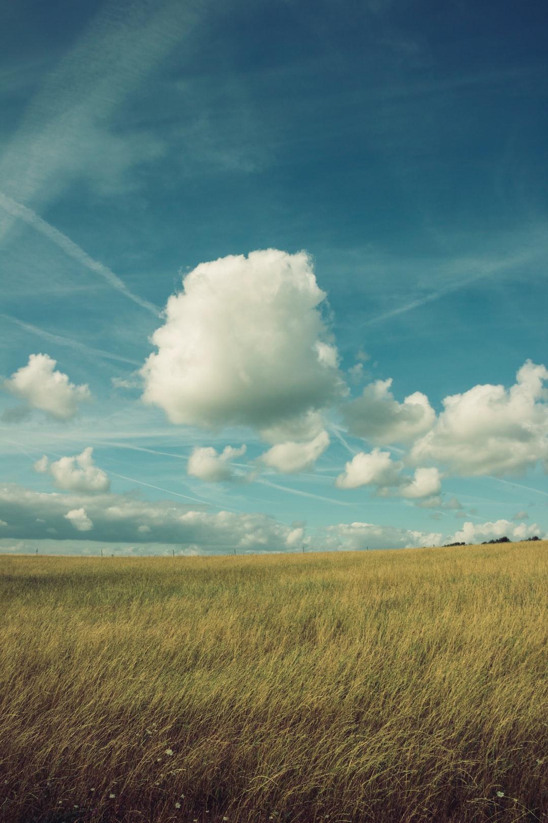 Beautiful clouds in a bright blue sky above a field