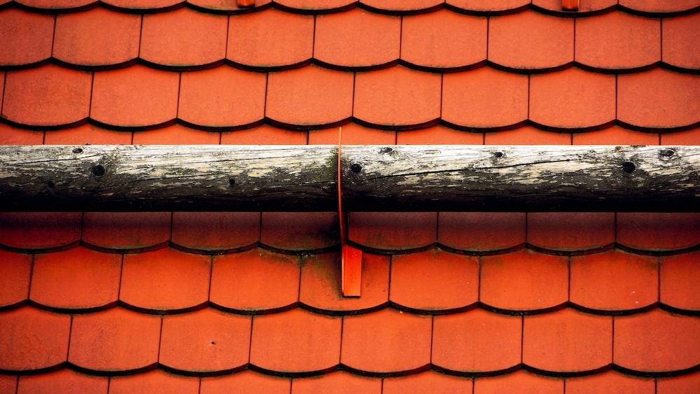 macro photography of orange shingles