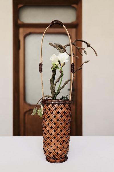 white petaled flower on brown woven basket