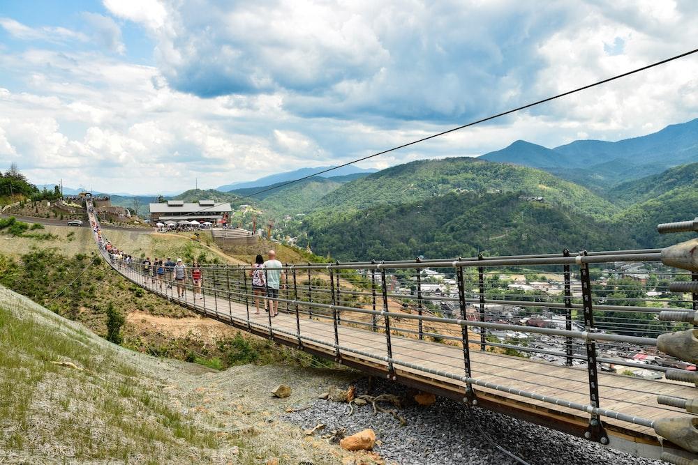 people walking on hanging bridge during daytime