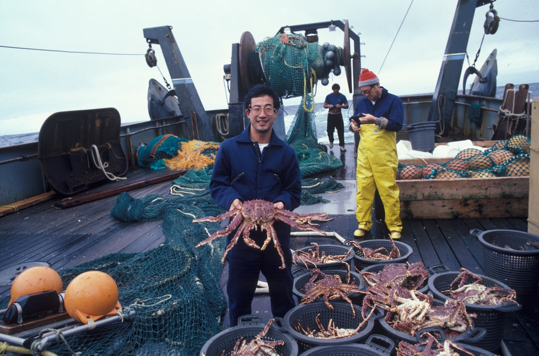 Allen Shimada showing king crab caught in Bering Sea on research cruise
