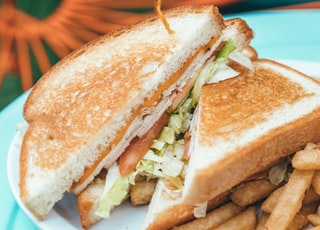 sandwich and friers dish