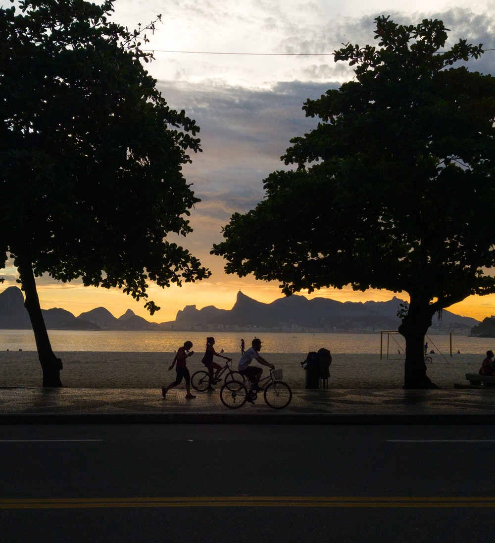 silhouette photography of people riding on bicycle