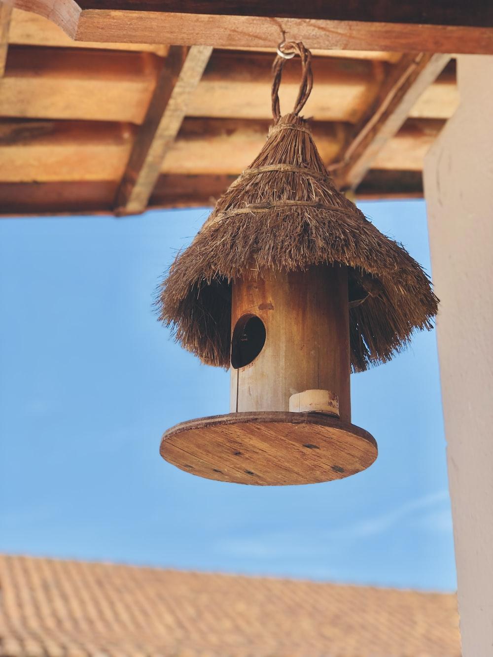 brown bird feeder during daytime