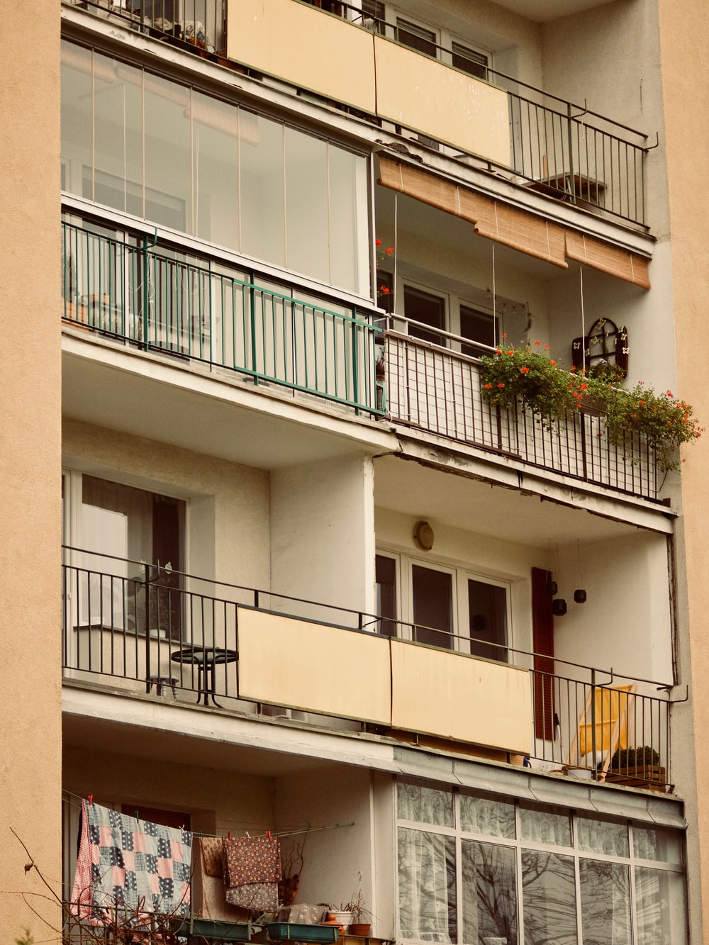 plants on terrace rails
