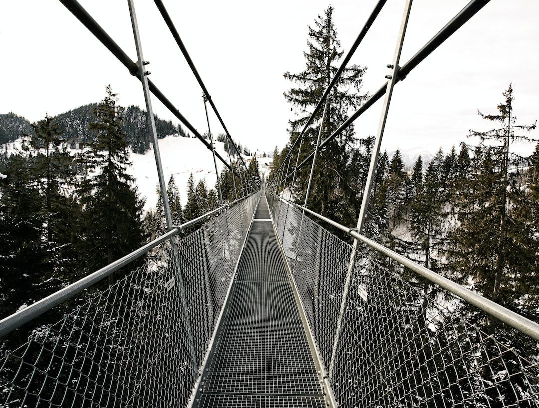 Long,  long bridge
