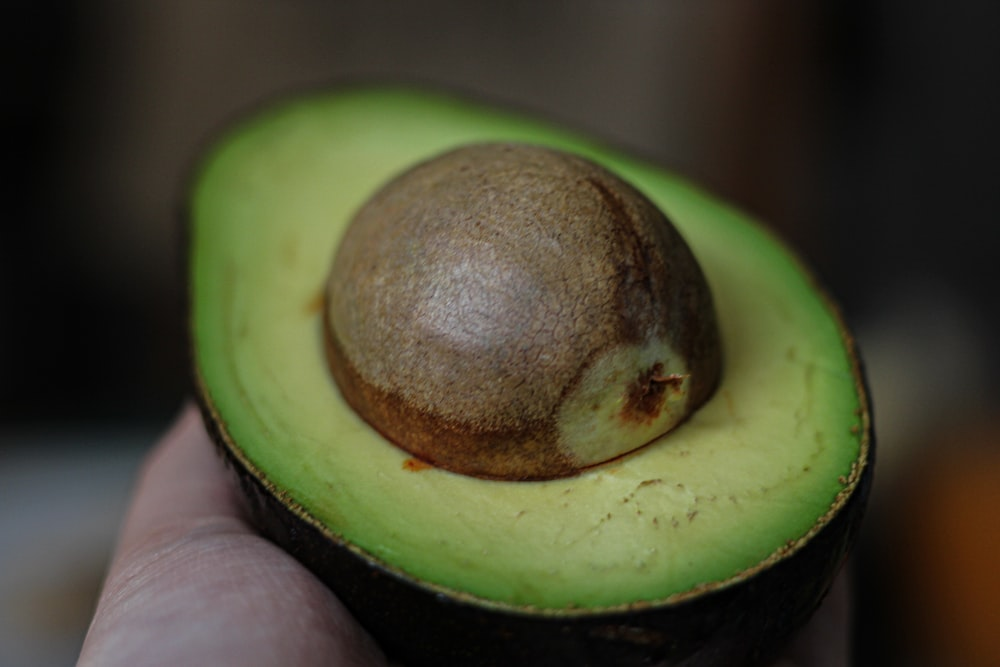 green alligator pear avocado